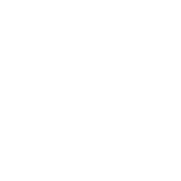 Pichler Steel structures & Facades